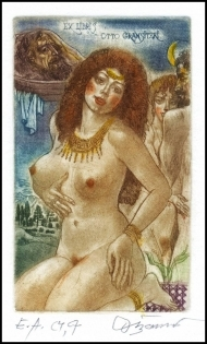 David Bekker 1989 Exlibris C4 Salome Erotic Nude Woman 440