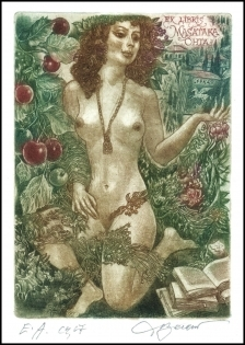 David Bekker Exlibris C4 Erotic Nude Woman Flowers Pegasus 97